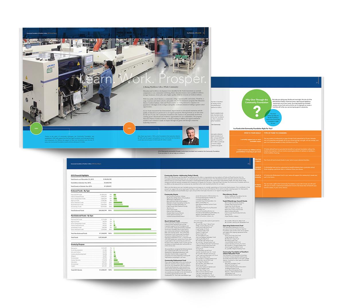 CFSI-Annual-Report-2015-3