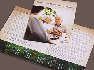 CFSI Advisor Brochures