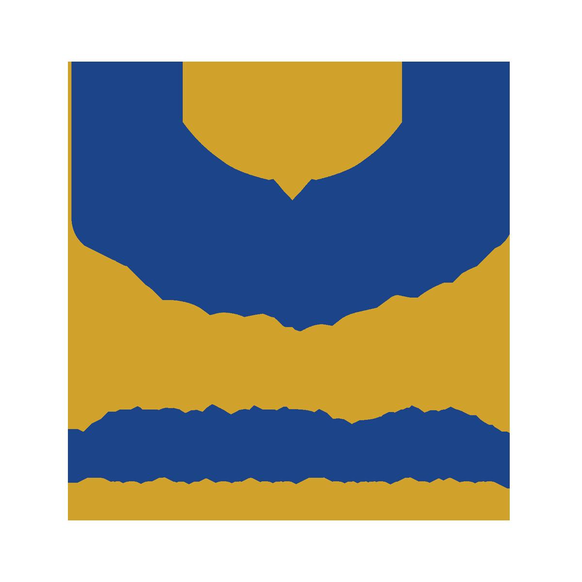 TEF-Logo